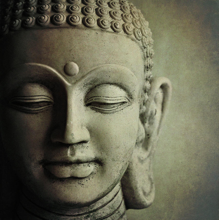 Finding Compassion